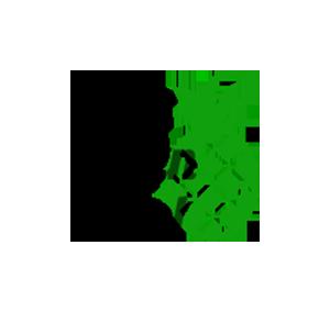 thegreenfuel-logo-copy