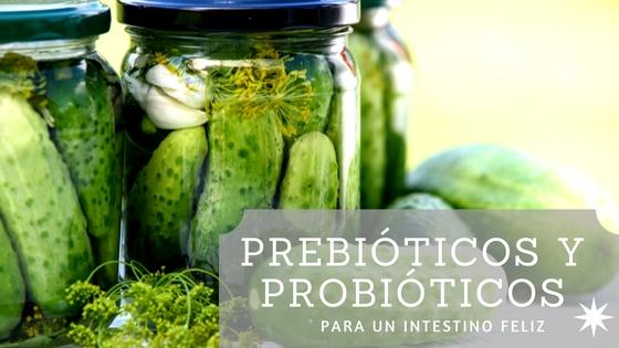 Prebióticos y probióticos para un intestino feliz