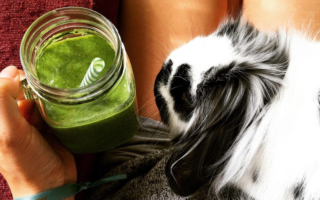 5 beneficios de desayunar un batido verde